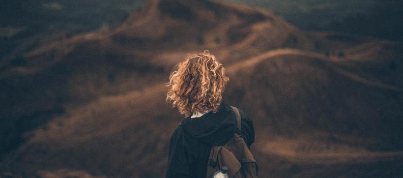 A Novice's Journey: Seek to Seek or Seek to Find.